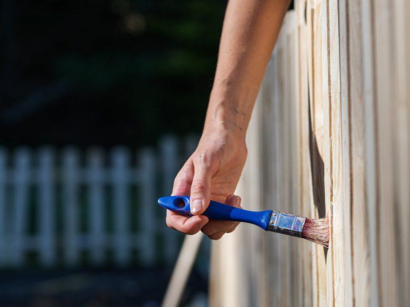 Jak odnowić płot z drewna? Tania renowacja ogrodzenia